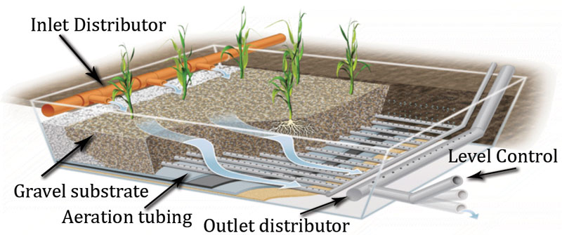 A horizontal sub-surface flow bioreactor engineered wetland cell.