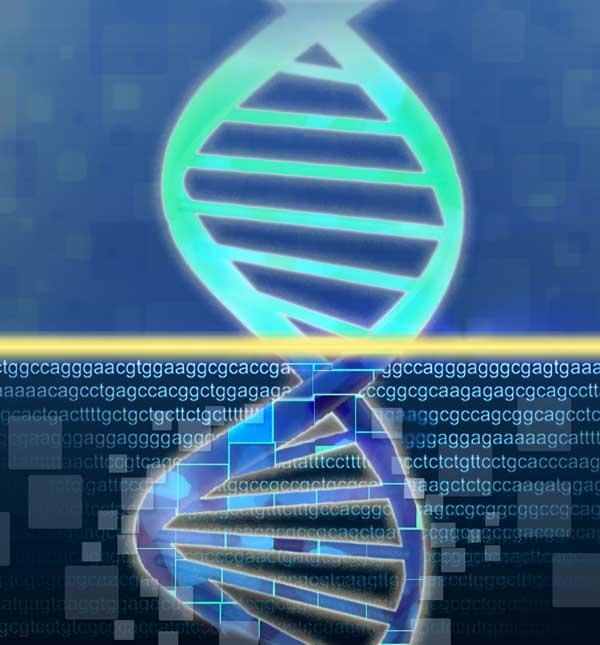 genome image