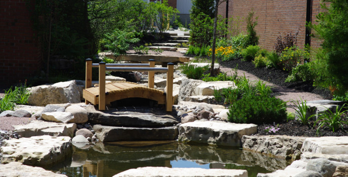 photo of stormwater retention and infiltration pond