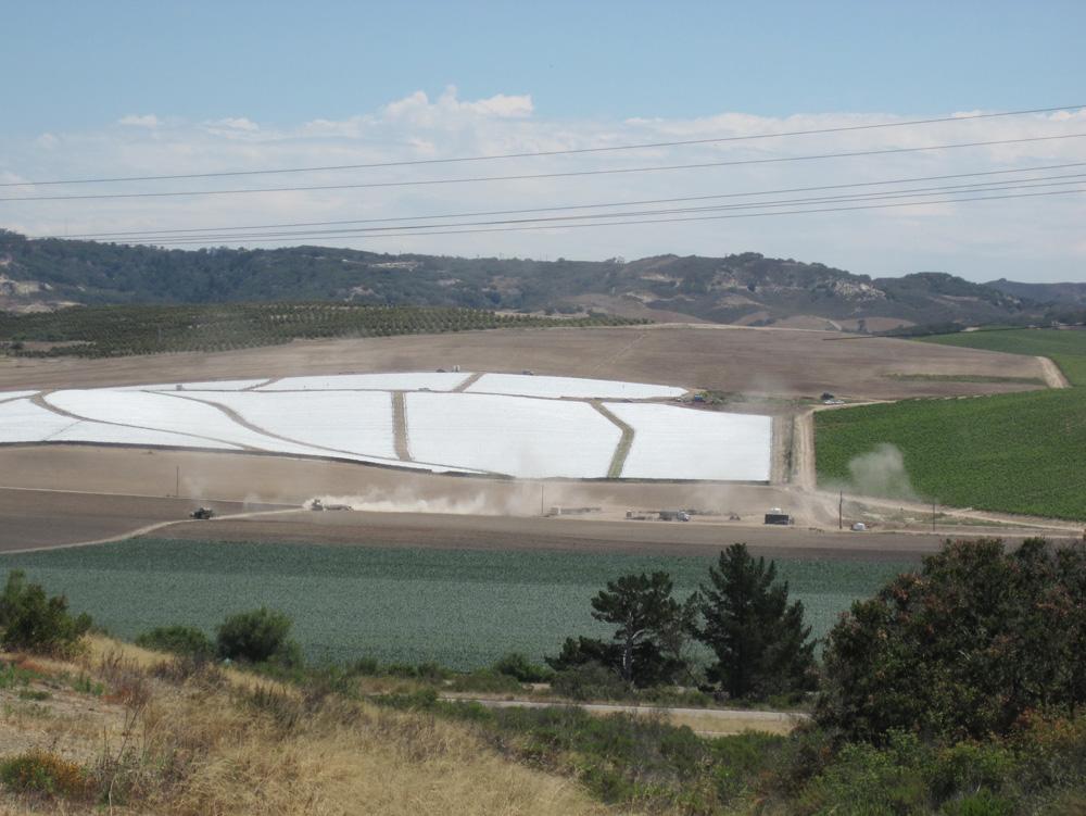 Farms in California