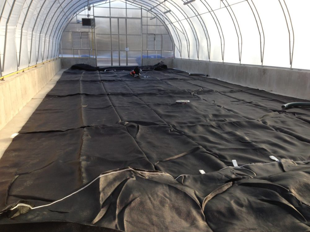 inside of the dewatering greenhouse