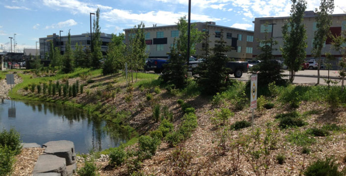 low-impact-development-stormwater-management