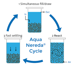 Aqua Nereda cycle
