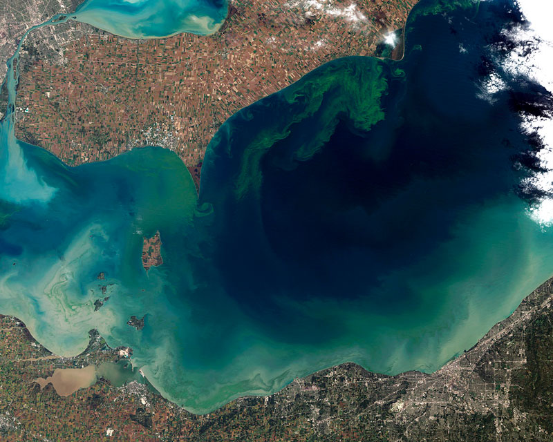Lake-Erie-algae-bloom