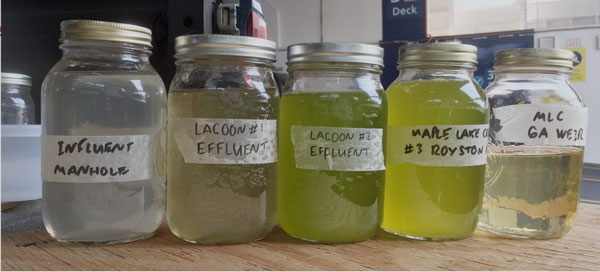 Cumberland-wastewater-samples