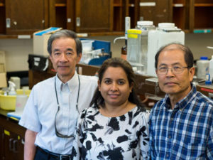The UBC research team