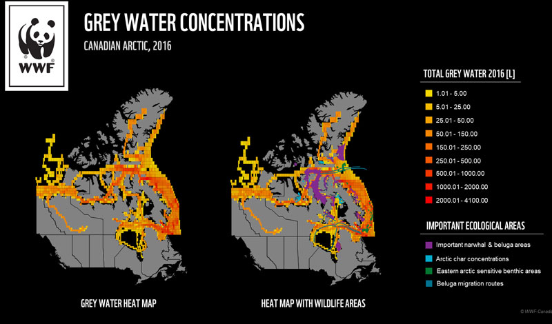 map of grey water concentrations in the Arctic