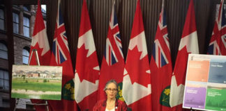 Environmental Commissioner Dianne Saxe