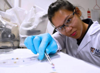 microplastics-researcher-Emily-Curren