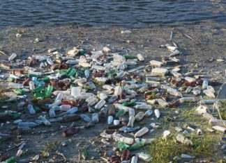plastic-bottles-on-a-shoreline