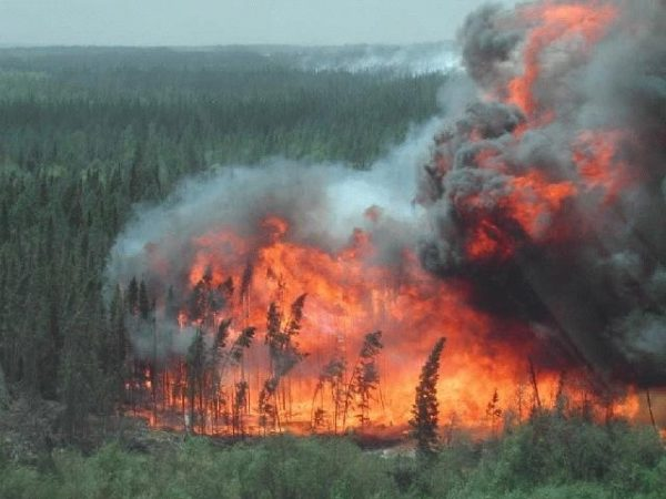 Calgary source water protection task forces study wildfires