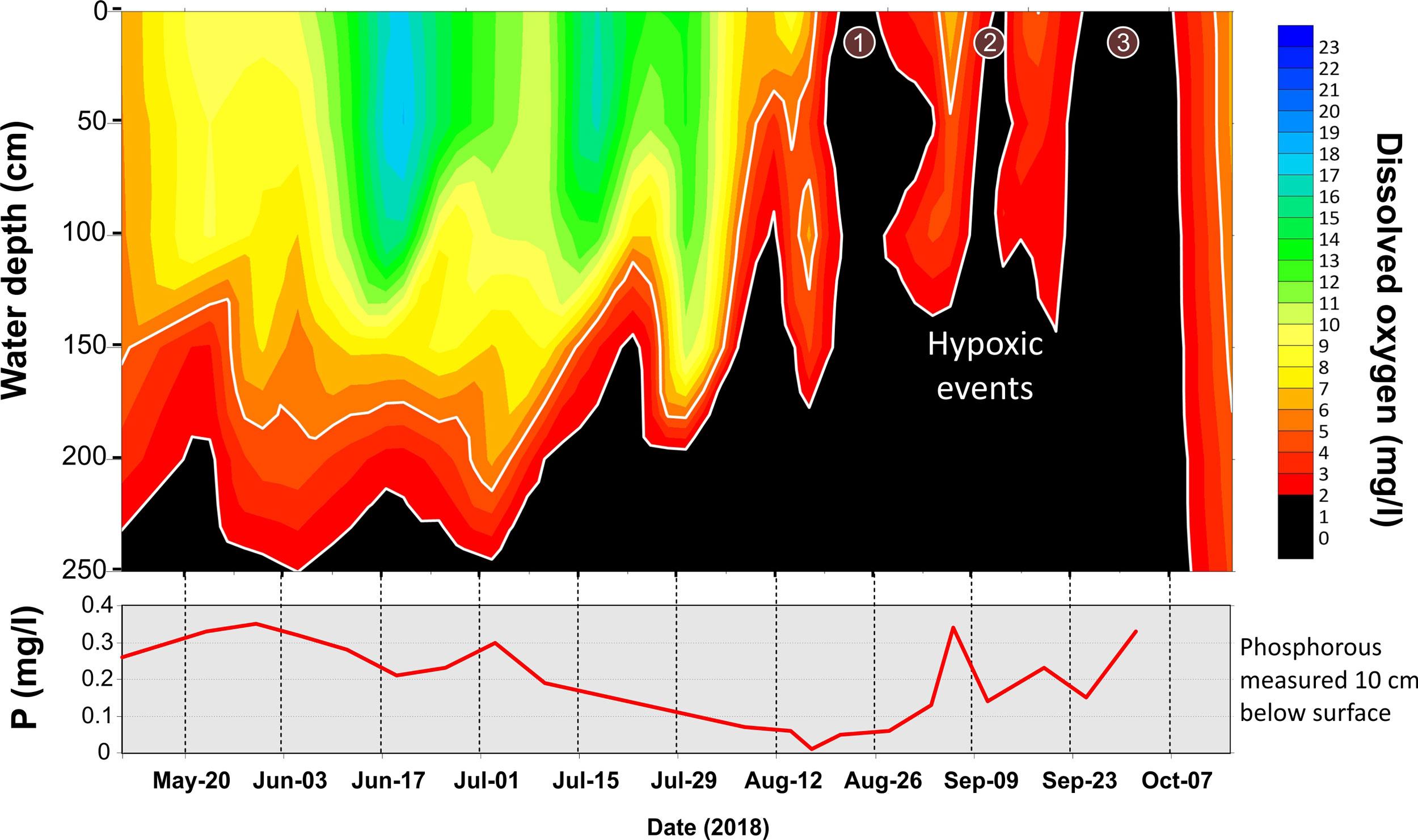 Figure 1 chart