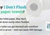 I don't flush poster