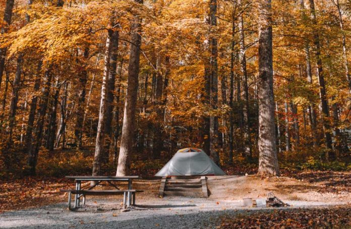 tent in a campground