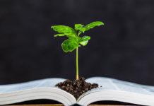 stock-environmental-law-image