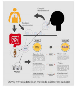 COVID19-infographic