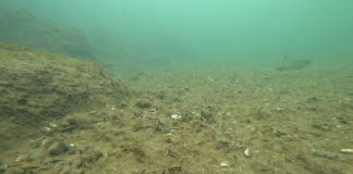 ROV-Lakebed-Assessment