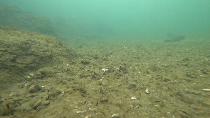ROV-Lakebed-Assessment
