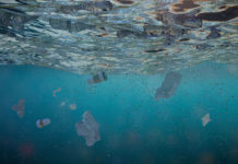 microplastics in ocean water