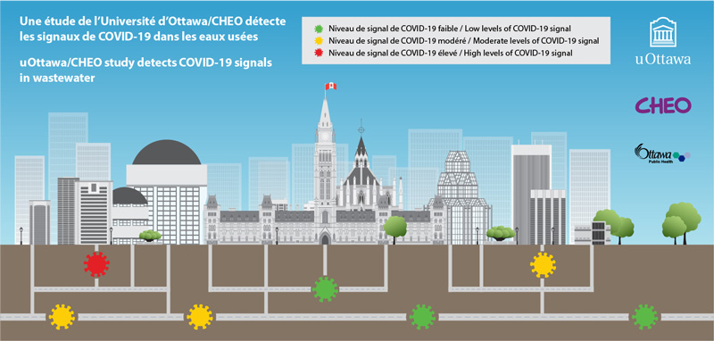 covid-wastewater-testing-graphic