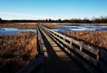 Frink-Conservation-Area-Ontario