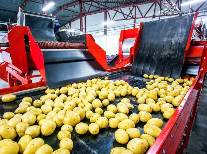 Potato-handling-equipment
