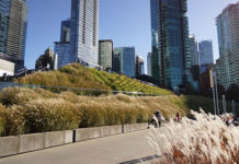green-roof-convention-centre-landing