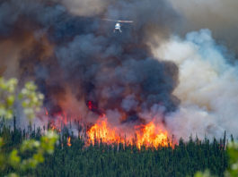 wildfire-stock-image